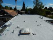 eichler spray foam roof